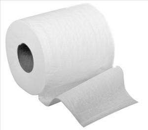 Green Tree Basics Toilet Paper 2-ply, 500 Sheets/roll (case of 96)